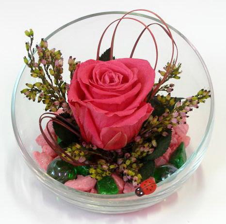 Стабилизированные цветы как сделать