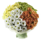 Как сочетать хризантемы в одном букете